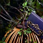 фиолетовая сумка dolce and gabbana bag